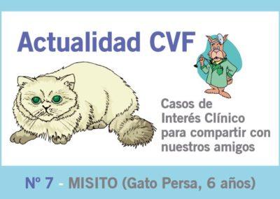 Enfermedad odontoclástica felina