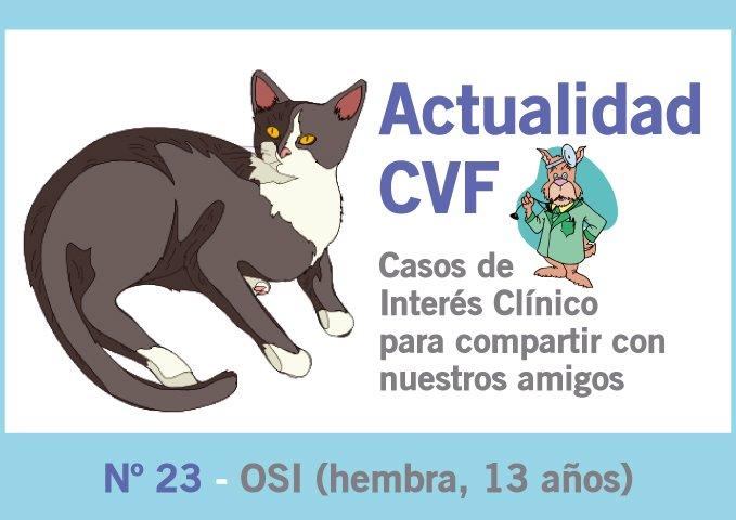 Tumor oral felino